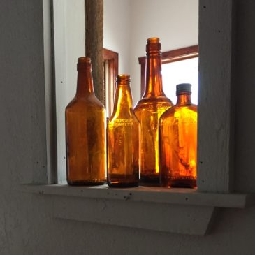 Vintage Bottles Discovered in the Backyard of Adolfs Event Center & Tavern